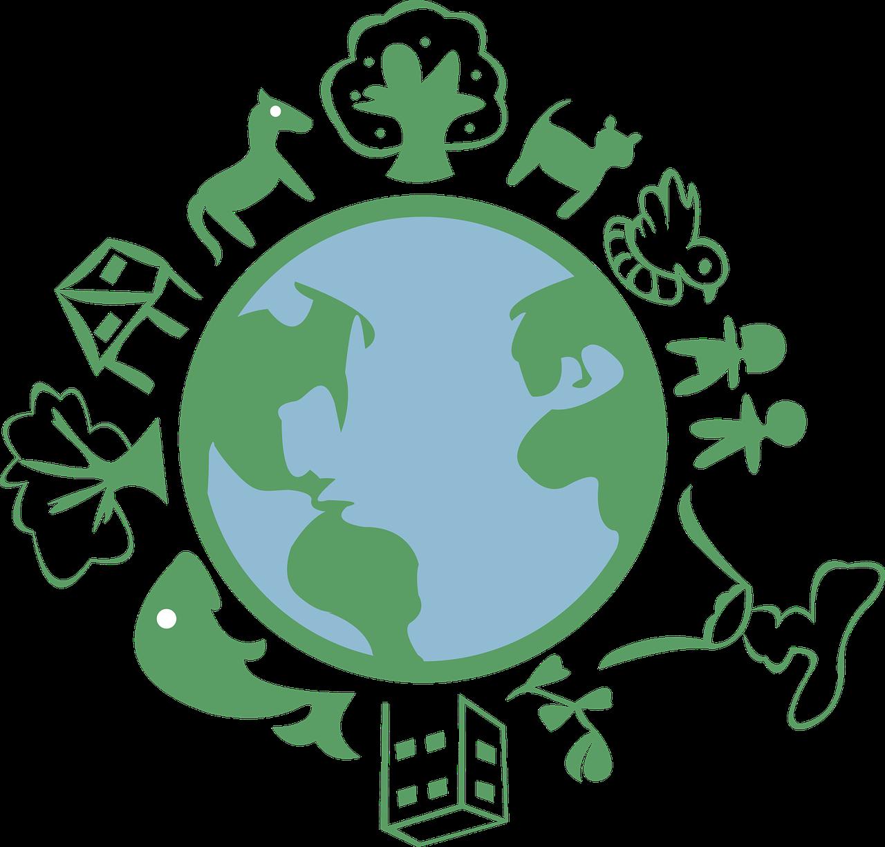 Vivir post covid-19, ser ecologista es una decisión consciente