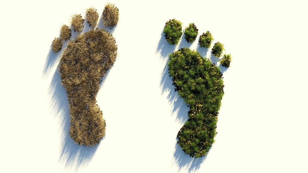 huella ecológica individual
